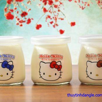 hu-thuy-tinh-pudding-200ml