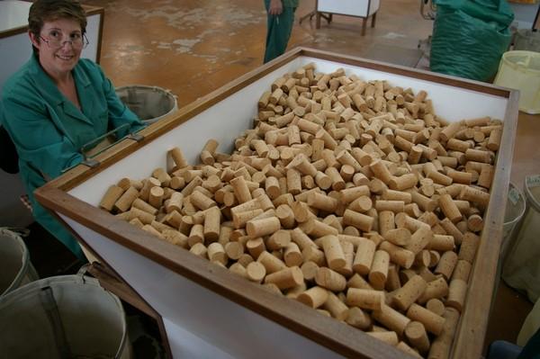 quy-trinh-san-xuat-nut-ban-chai-ruou-vang-16